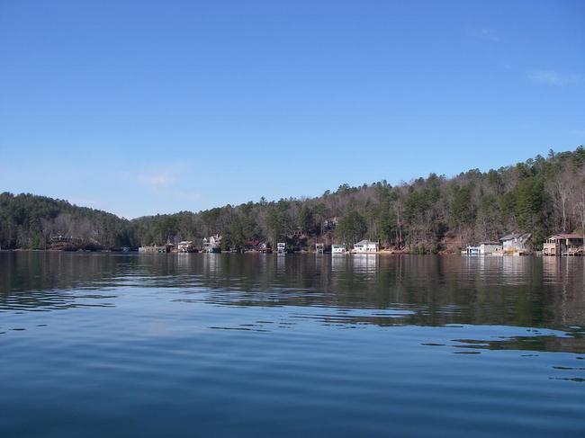 Calm view of Big Basin